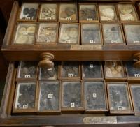 Materia medica medicine chest (unknown owner)